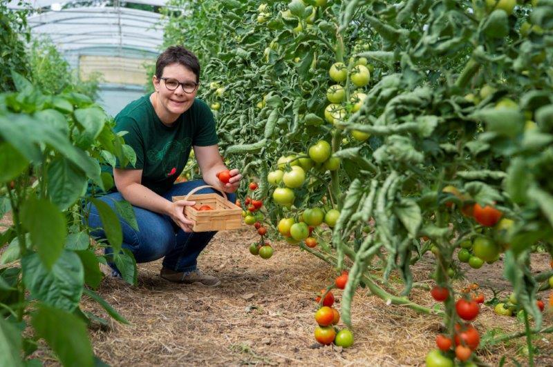 Anja an der Solidarischen Landwirtschaft