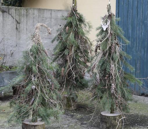 Workshop: Alternative Tannenbäume (abgesagt)