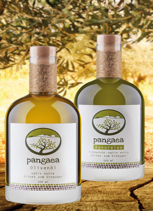 Pangaea Olivenöl aus Griechenland