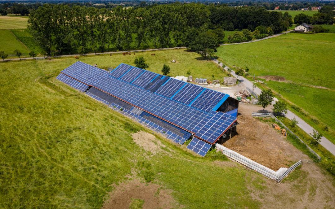 Energielandwirt des Jahres 2020